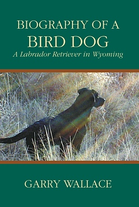 Biography of a Bird Dog
